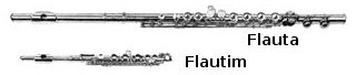 Flauta e Flautim
