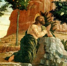 Os segredos da Paixão segundo São Mateus – 4. No caminho para o Monte das Oliveiras